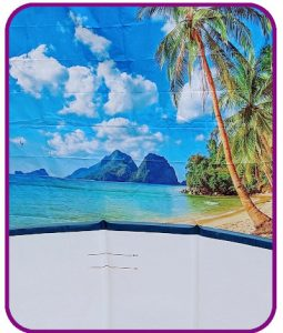 Beach Scene Backdrop