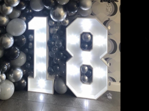 4ft LED light up numbers - 18